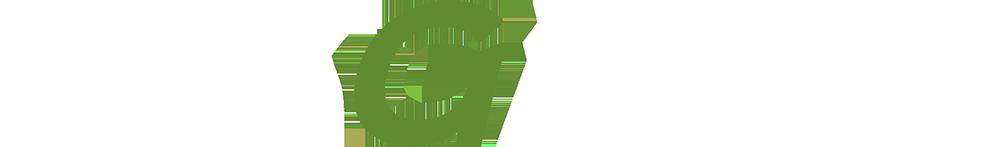 bisgame-logo-frontpage